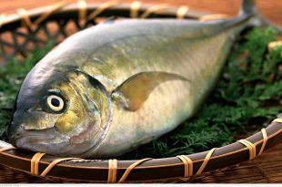 صوره فوائد السمك , علي اي قيمة غذائية يحتوي السمك