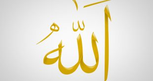 بالصور صور كلمة الله , اروع صور لفظ الحلالة الله 3580 11 310x165