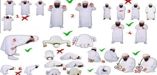 صوره الطريقة الصحيحة للصلاة , تعليم الصلاة بالطريقة الصحيحة