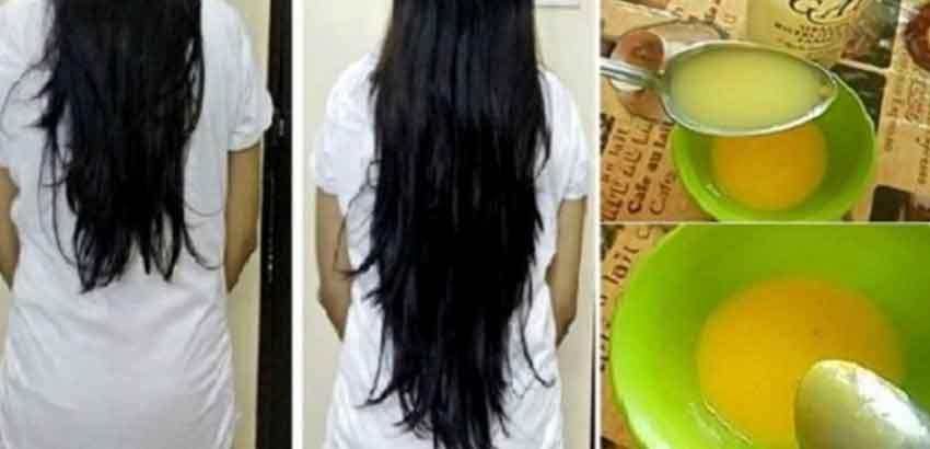 صور افضل زيت لتكثيف الشعر , طريقة طبيعية لتكثيف الشعر