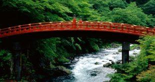 بالصور صور طبيعة جميلة , مناظر طبيعية خلابة 4857 13 310x165
