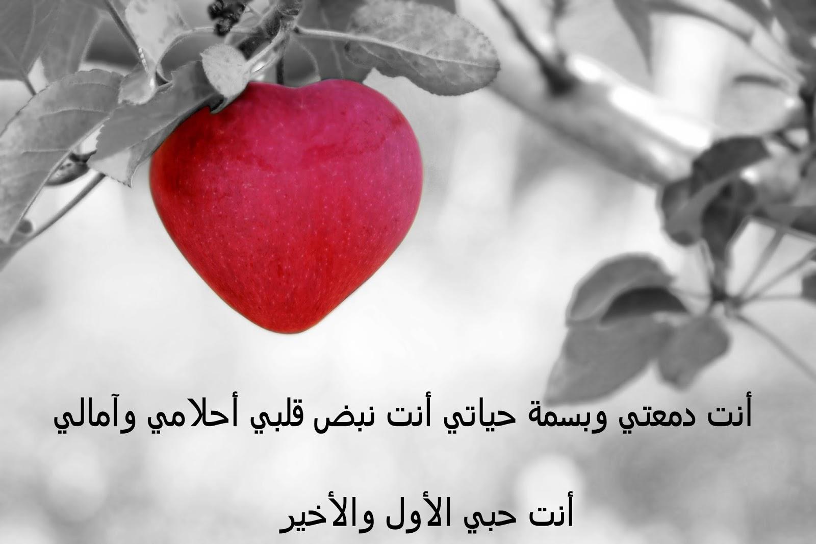 بالصور كلام جميل عن الحب , الحب وكيف تنطق الكلمات الجميله فى الحب 3440 2