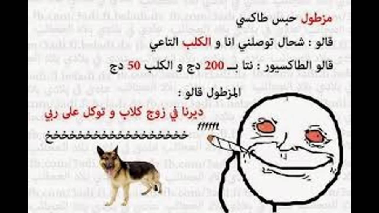 بالصور صور مضحكة جزائرية , احلى الضحك والنكت من شعب الجزائر 3465 7
