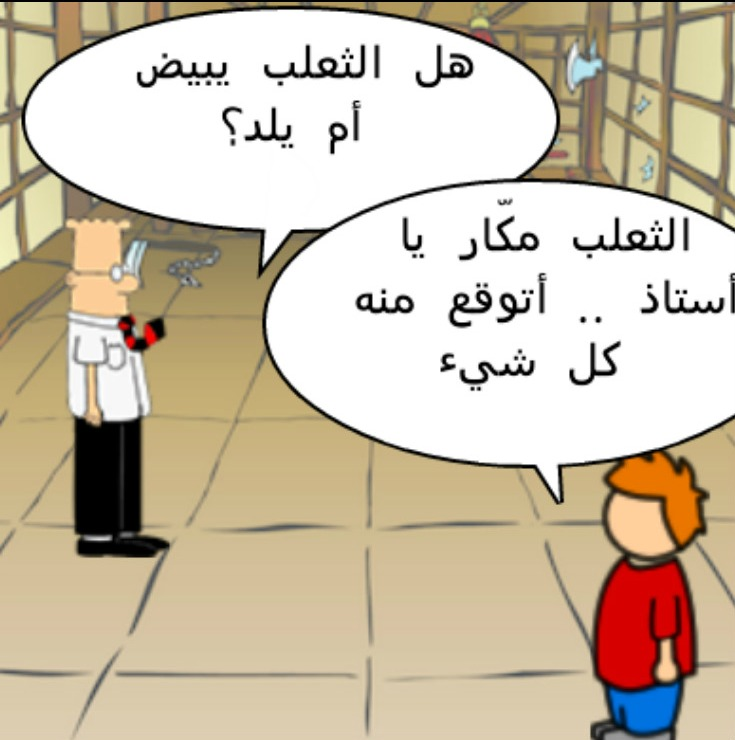 بالصور صور مضحكة جزائرية , احلى الضحك والنكت من شعب الجزائر 3465 8