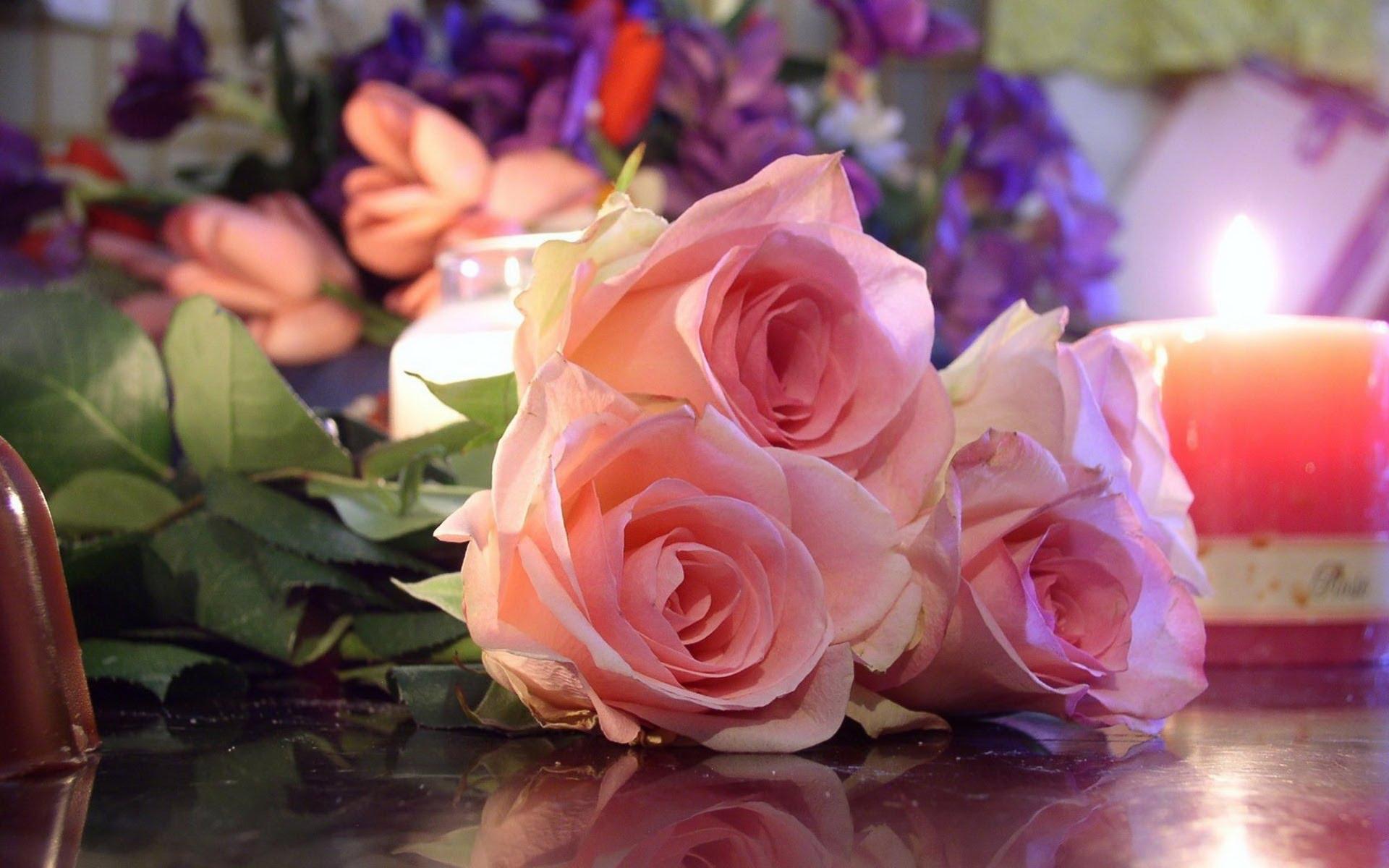 بالصور صور ورود روعه , اجمل صور الورود الرقيقة 3469 10