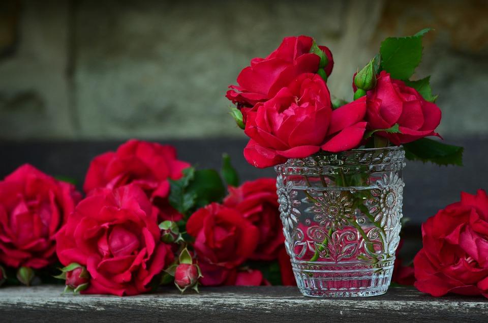 بالصور صور ورود روعه , اجمل صور الورود الرقيقة 3469 2