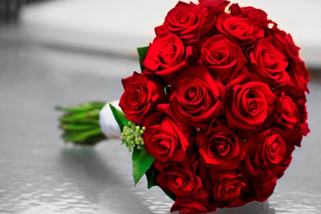 بالصور صور ورود روعه , اجمل صور الورود الرقيقة 3469 4