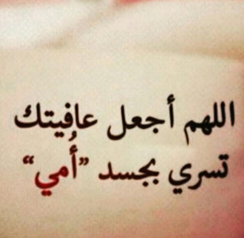 بالصور حكم عن الام , الام وحكم لتعظيم من شانها 3600 3