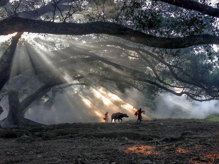 بالصور اجمل صور العالم , شاهد صور جميلة للعالم 3771 1