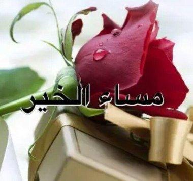بالصور مساء الخير كلمات , عباراة مساء الخير 3809 2