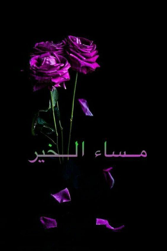 بالصور مساء الخير كلمات , عباراة مساء الخير 3809 8