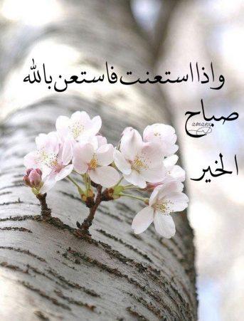 بالصور كلمة صباح الخير , صور جميلة مكتوب عليها صباح الخير 3910 11