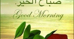 صوره كلمة صباح الخير , صور جميلة مكتوب عليها صباح الخير