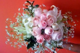 بالصور اجمل ورود الحب , صور ورود الحب الجميلة 3921 15 310x205
