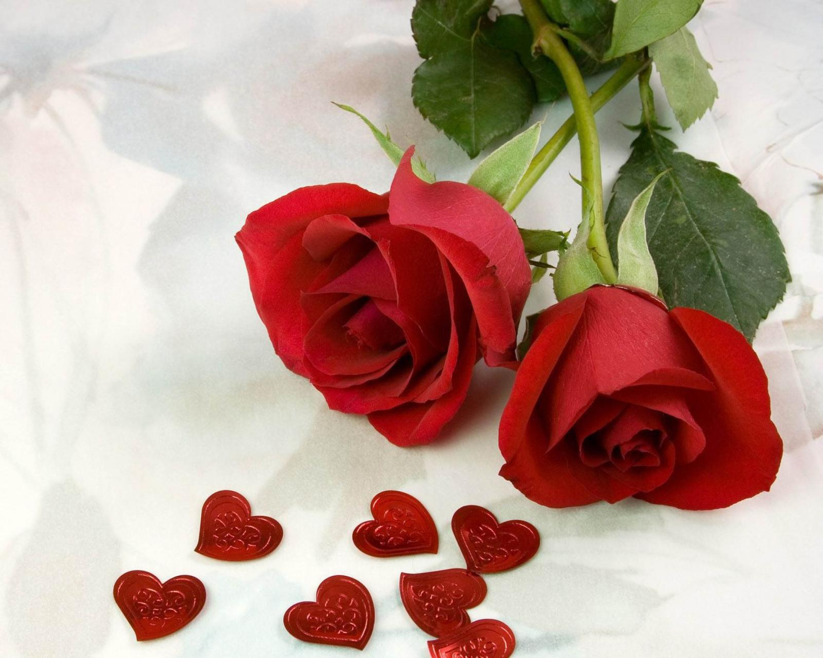 بالصور اجمل ورود الحب , صور ورود الحب الجميلة 3921 5