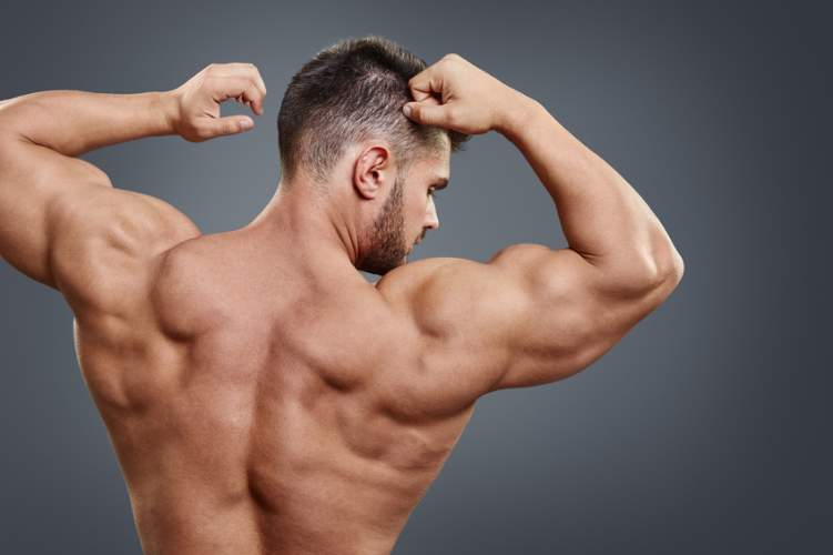 بالصور كم عدد عضلات جسم الانسان , معلومات عن عدد عضلات جسم الانسان 3945 1