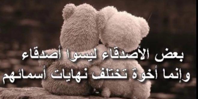 بالصور كلمات معبرة عن الصداقة , عبارات جميلة قيلت عن الصداقة 4000 16 660x330