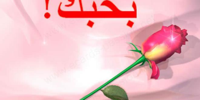 صوره مسجات حب وغرام , رسائل حب و غرام مختلفة و جميلة