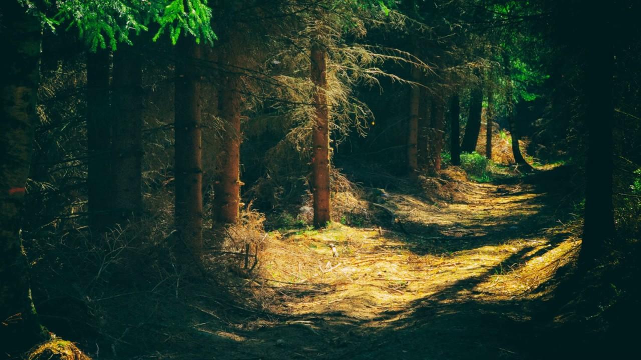 بالصور صور مناظر طبيعيه , لن ترى اجمل من هذة المناظر الطبيعية الخلابة 4087 7