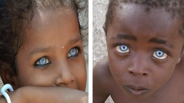 بالصور صور اجمل عيون , لن ترى اجمل من هذة العيون 4174 11