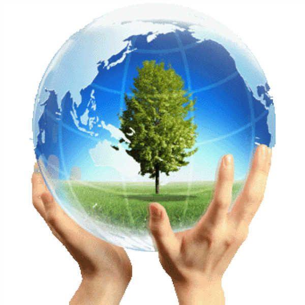 بالصور صور عن البيئة , خلفيات روعة عن البيئة 4188 10
