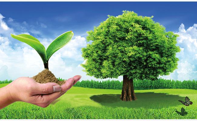 بالصور صور عن البيئة , خلفيات روعة عن البيئة 4188 2