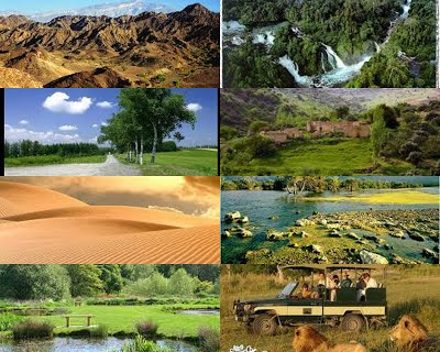 بالصور صور عن البيئة , خلفيات روعة عن البيئة 4188 3