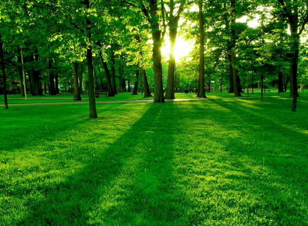 بالصور صور عن البيئة , خلفيات روعة عن البيئة 4188 7
