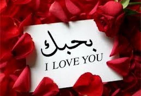 بالصور رسائل حب وغرام , عبر عن حبك و غرامك في رسائل جميلة 4190 6