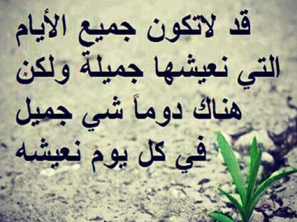 بالصور حكمة الصباح , اجمل ما قيل من حكم الصباح 4201 12