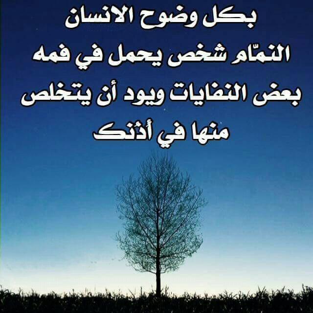بالصور حكمة الصباح , اجمل ما قيل من حكم الصباح 4201 6