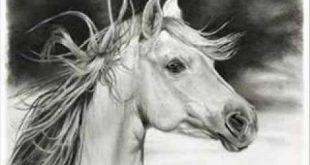 بالصور اجمل رسومات , رسومات روعة و جميلة 4213 14 310x165