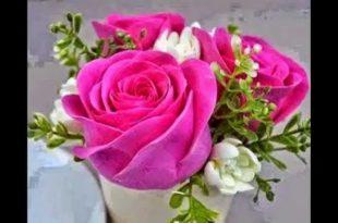 صوره صور اجمل الورود , صورة احلى الورود فى العالم
