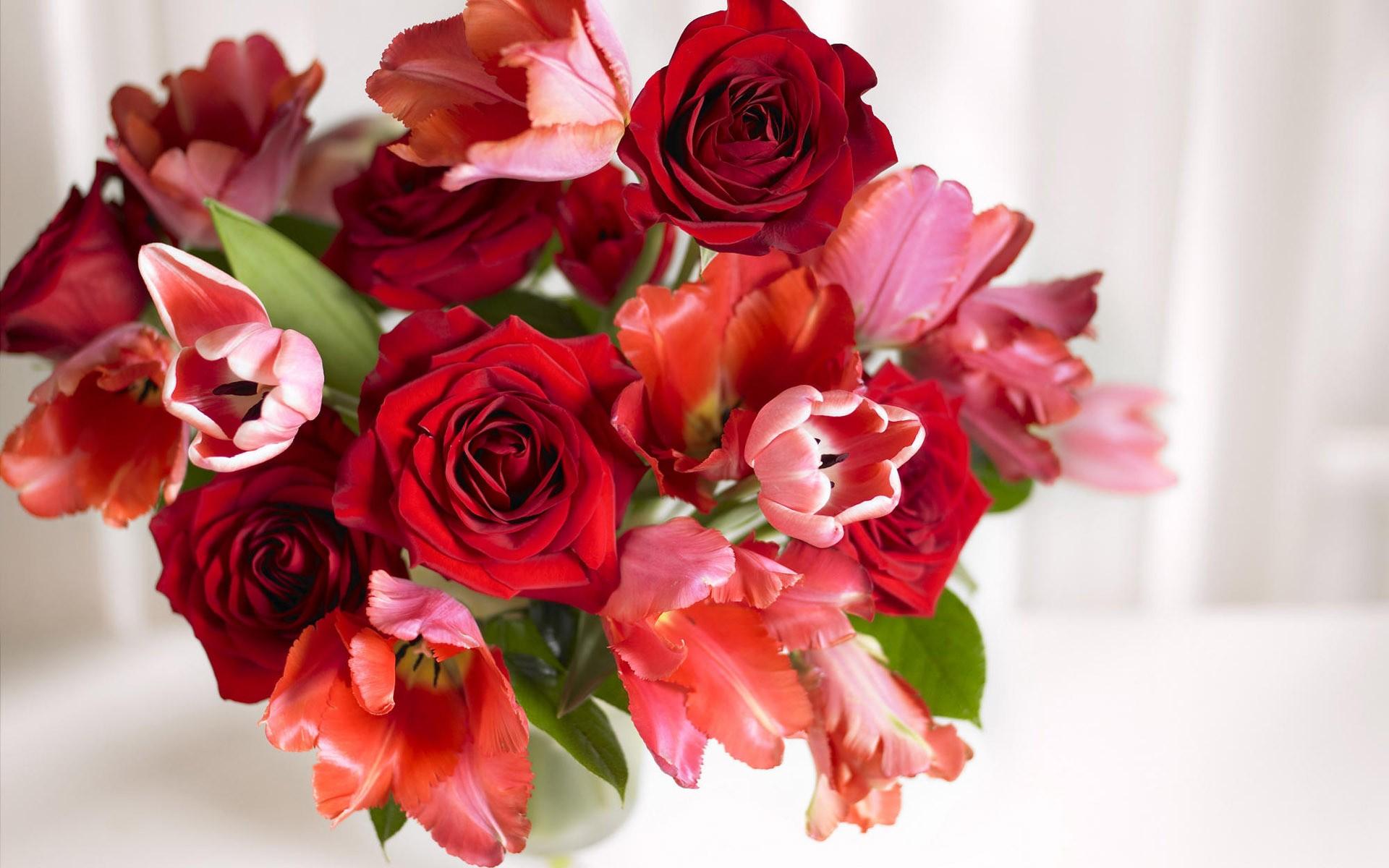 بالصور صور اجمل الورود , صورة احلى الورود فى العالم 5136 4