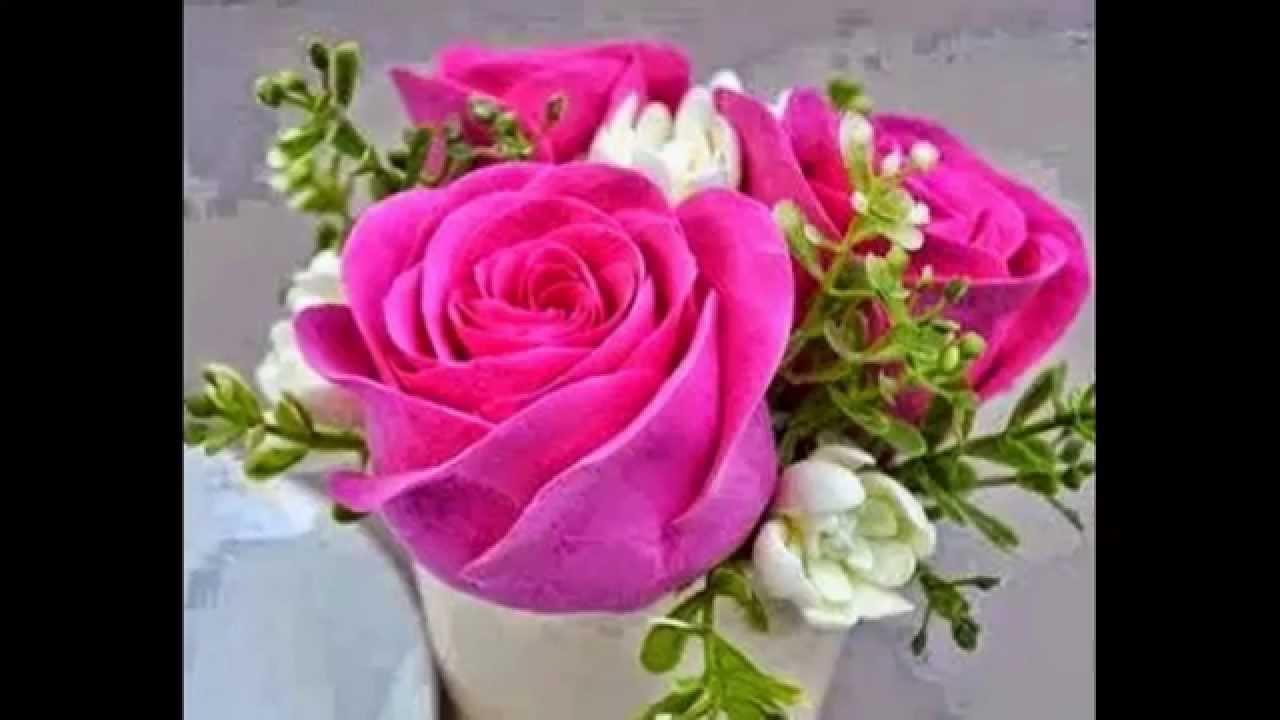 صور صور اجمل الورود , صورة احلى الورود فى العالم