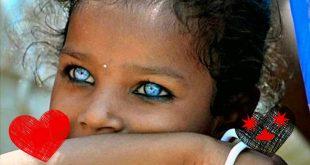بالصور اجمل عيون في العالم , عيون جميلة من كل مكان فالكون 129 12 310x165