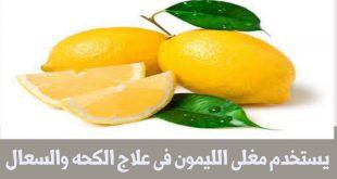 بالصور فوائد الليمون , تعرف على الفوائد الكثيرة لليمون 5809 3 310x165