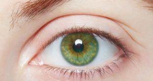 بالصور صور عيون خضر , اجمل عيون خضراء فى العالم 145 11 310x165