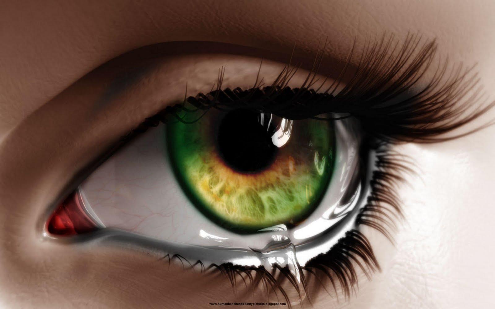 بالصور صور عيون خضر , اجمل عيون خضراء فى العالم 145 4