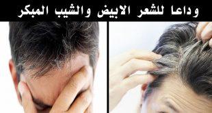 بالصور علاج الشيب المبكر , طريقة للقضاء على الشعر الابيض 5163 3 310x165