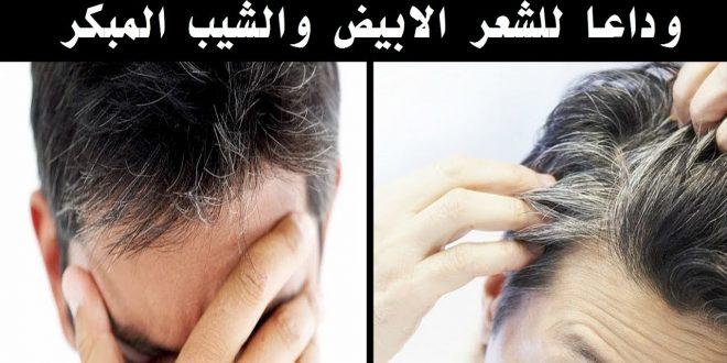 بالصور علاج الشيب المبكر , طريقة للقضاء على الشعر الابيض 5163 3 660x330
