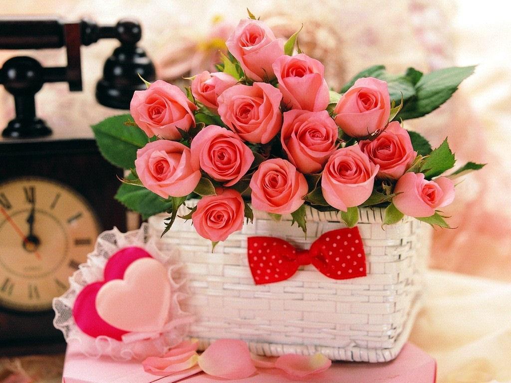 بالصور احلى صور ورد , اجمل واروع صور الورود فى العالم 5699 12