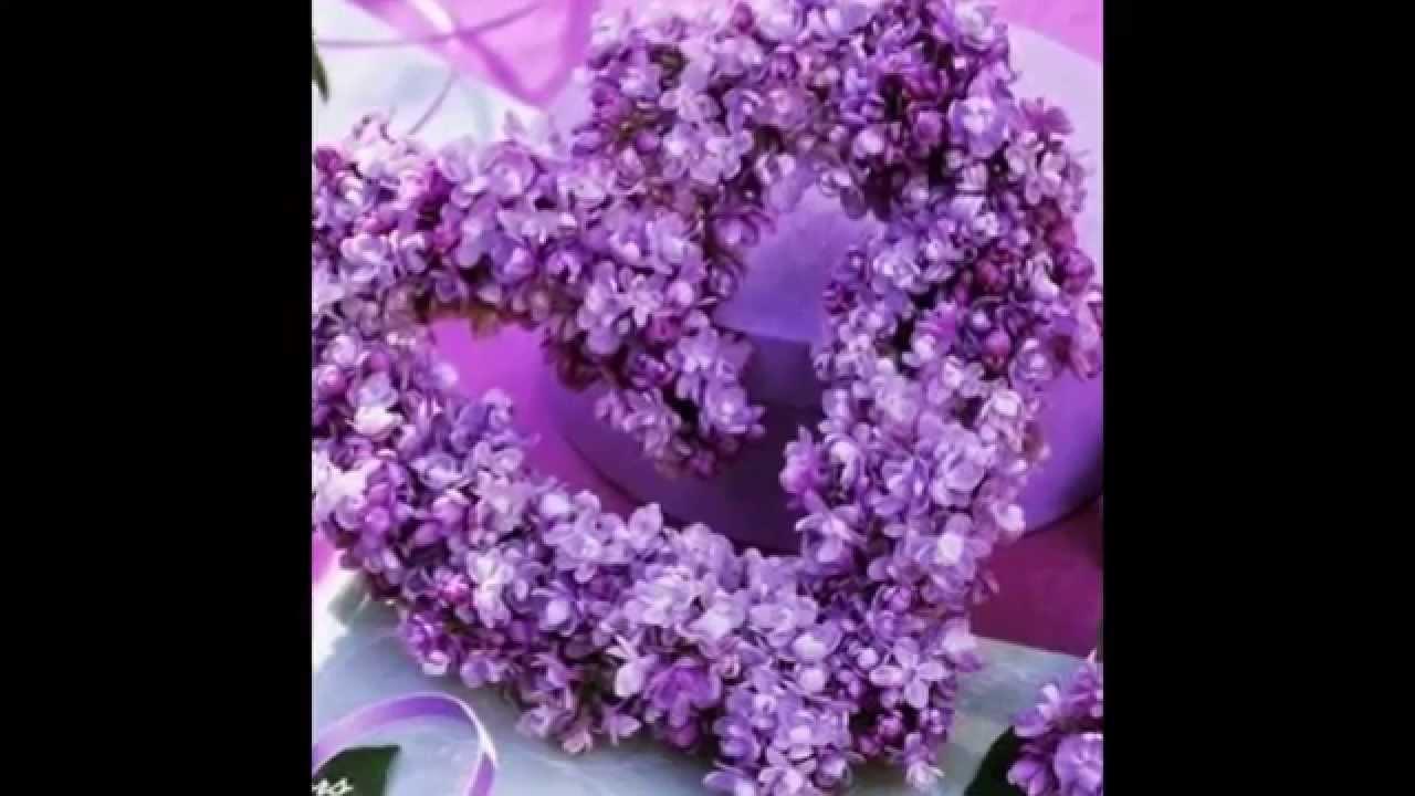 بالصور احلى صور ورد , اجمل واروع صور الورود فى العالم 5699 3