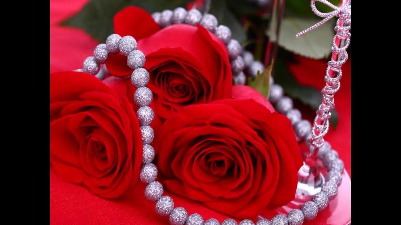 بالصور احلى صور ورد , اجمل واروع صور الورود فى العالم 5699 4