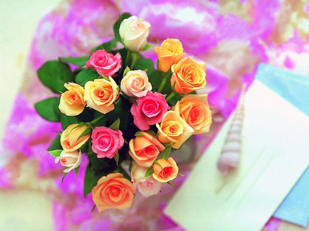 بالصور احلى صور ورد , اجمل واروع صور الورود فى العالم 5699 6