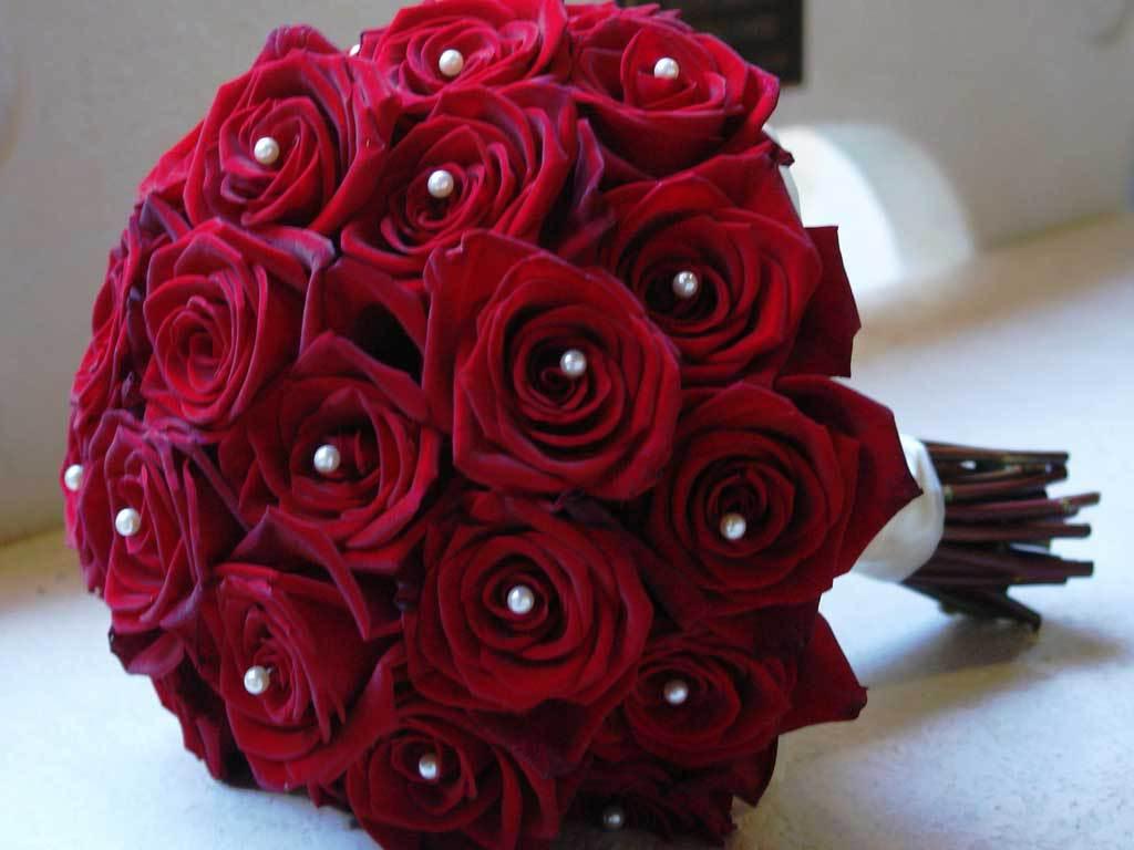 بالصور احلى صور ورد , اجمل واروع صور الورود فى العالم 5699 7