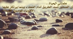 بالصور كلمات جميلة عن الحياة , اجمل ما قيل عن الحياة 5737 11 310x165