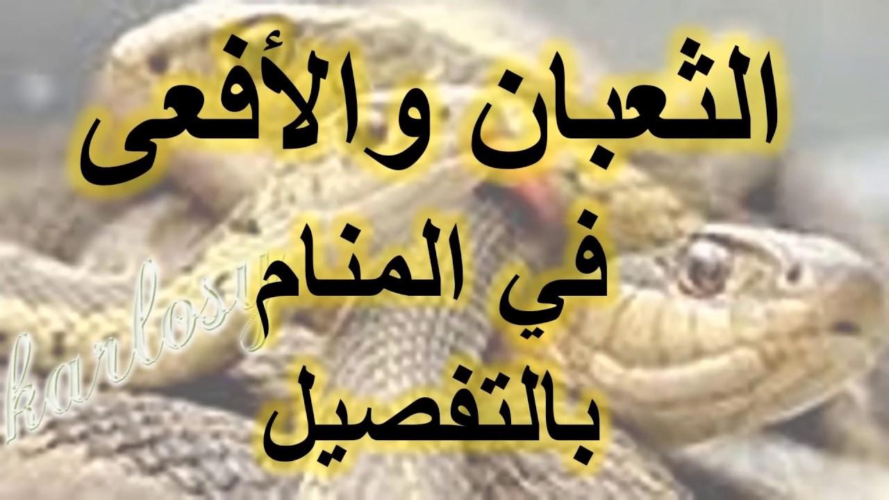 صور تفسير حلم الثعابين في البيت , معنى رؤيا الثعبان فى المنام