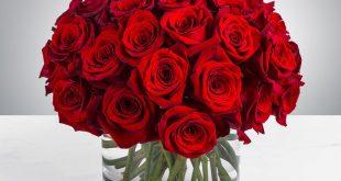 بالصور صور ورود جميلة , اجمل مناظر الورود 66 12 310x165
