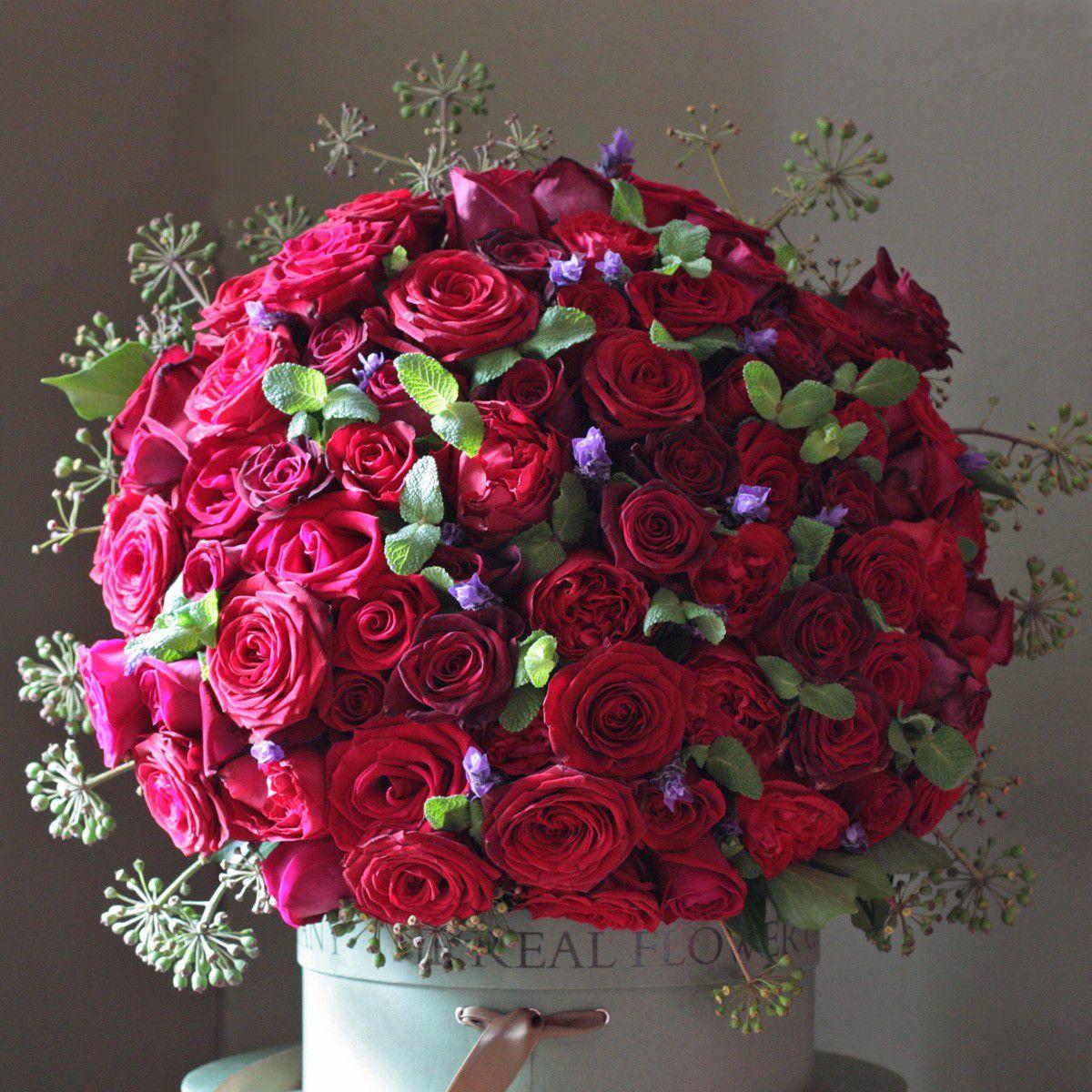 بالصور صور ورود جميلة , اجمل مناظر الورود 66 2